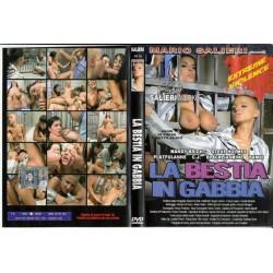 DVD RUSSIAN INSTITUTE: LESSON 11 - PORNY CLUB