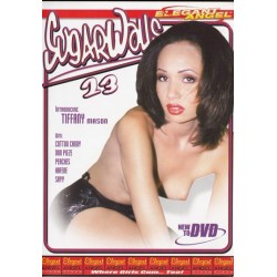 DVD ISLAND BOYS 2
