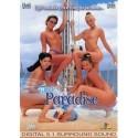 DVD EXXXTREME DREAMGIRLS 7