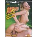 DVD KAMIKAZE PREMIUM 14 Jun Nada