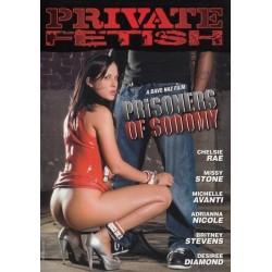 DVD NINFAS À PROCURA DO ORGASMO PERFEITO