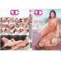 DVD TEENAGE FANTASIES 3